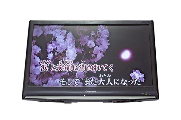 歌い手フロアモニター32TV